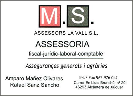 MS-assessors